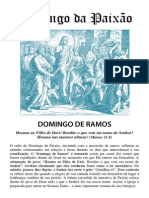 Culto Domingo Ramos Web