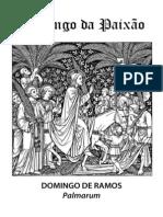 Domingo da Paixão - Procissão de Ramos