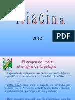 niacina_b3_y_b6_qf_12