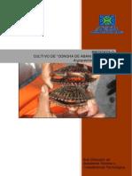 Protocolo de Cultivo de Concha de Abanico