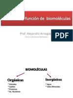 Clase Estructura y función de biomoléculas