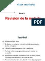 11 Revision de NEU14.pptx