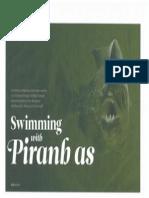 Piranha Opener PDF