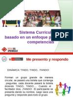 Sistema Curricular 24-1-14