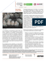 Alimentos Balanceados en La Nutricion de Las Aves de Corra