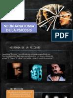 psicosis naty1