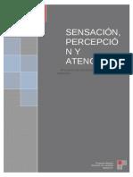 definitivotrabajodesensacionypercepcion-120425024824-phpapp02