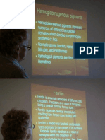 Pathanatomy Lecture - 06 Pigmentation