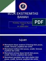 10 Blok Ekstremitas Bawah Cpd 2012