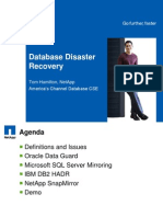 Database Disaster Recovery