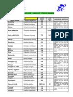 tamanhos_minimos.pdf