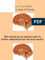 Brain Powerpoint