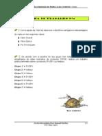 Ficha Redes4
