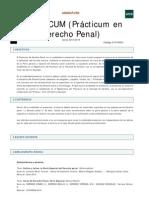 PRACTICUM Derecho Penal 2013 14