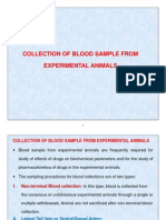 4. Collection of Blood Sample From Experimental Animals