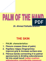 10-Palm of Hand