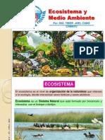 Clase N° 2, ECOSISTEMA y MEDIO AMBIENTE Industria