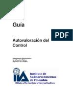 Guía  de Autovaloración del Control - 2010