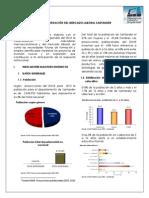 Caracterizacion Mercado Laboral Santander