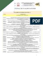 Catálogo nacional de cualificaciones, nivel 2