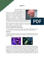 La Meningitis Es Un Proceso Inflamatorio Agudo Del Sistema Nervioso Central Causado Por Microorganismos Que Afectan Las Leptomeninges-1