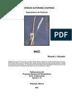 Historia Del Maiz 2