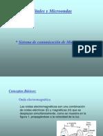MICROONDAS DIVERSIDADES