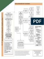 03 01Proceso y Estructura Del PEF