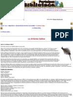 La Artemia Salina