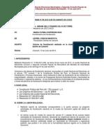 INFORME 09 Fiscalizacion Ciudad de Quincemil