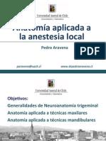 Anatomia Aplicada Anestesia Local UDP Coronado