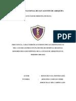 1. Informe Final