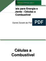 Células a Combustível - Daniel Woody
