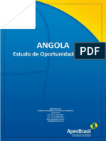 APEX - Angola Estudo Oportunidades 2010