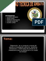 Proyecto Helado de Camote-Economia1