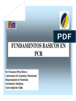Clase Fundamentos PCR 2009