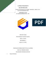 laporan RASIO transformator