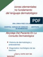 Las lesiones elementales como fundamento del lenguaje dermatológico