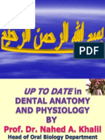 Maxillary permanent central incisors