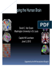 Mapping the Human Brain