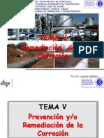 Temav. Remediacion de La Corrosion Scrib