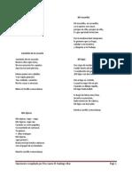 Cancionero- Laura Santiago