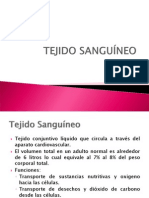 3 T. Sanguineo, T. Muscular