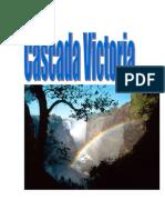 Www.referate.ro-cascada Victoria 9f7d2