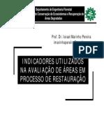 Aula indicadores.pdf