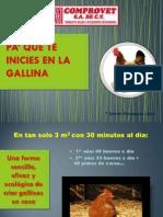 Pa Que Te Inicies en La Gallina