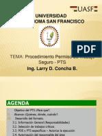 1045 390702 20132 0 Procedimiento Permiso de Trabajo Seguro - PTS