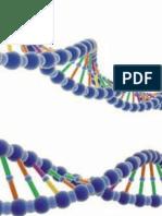 Las Palabras Pueden Modificar El ADN