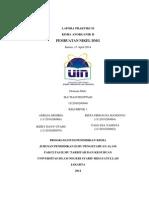 Laporan Praktikum Pembuatan Nikel DMG