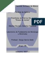 Preinforme Práctica 1 FMM